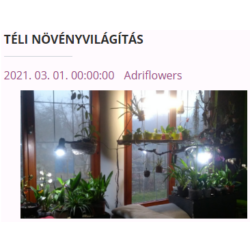 téli növényvilágítás