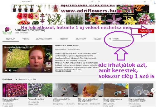 adriflowers Youtube